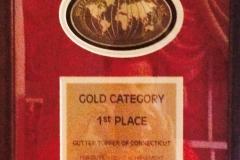 gold-award-2008
