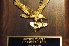 gutter-topper-sales-2010a