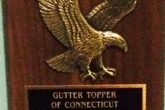 gutter-topper-sales-2012